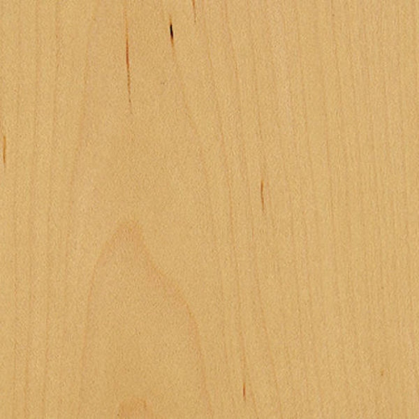 4mm Maple Veneer